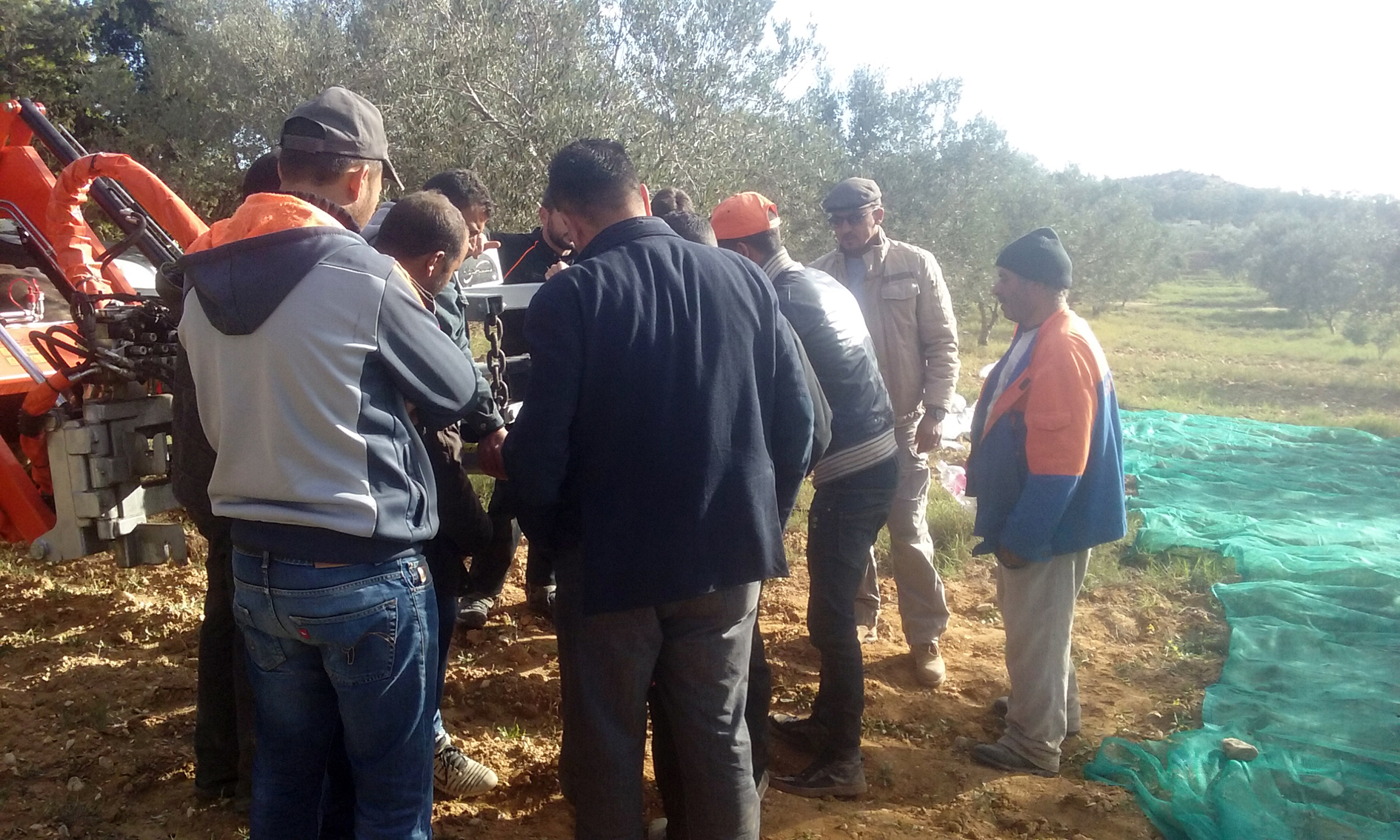 demonstration_collector_olives_almonds_agromelca