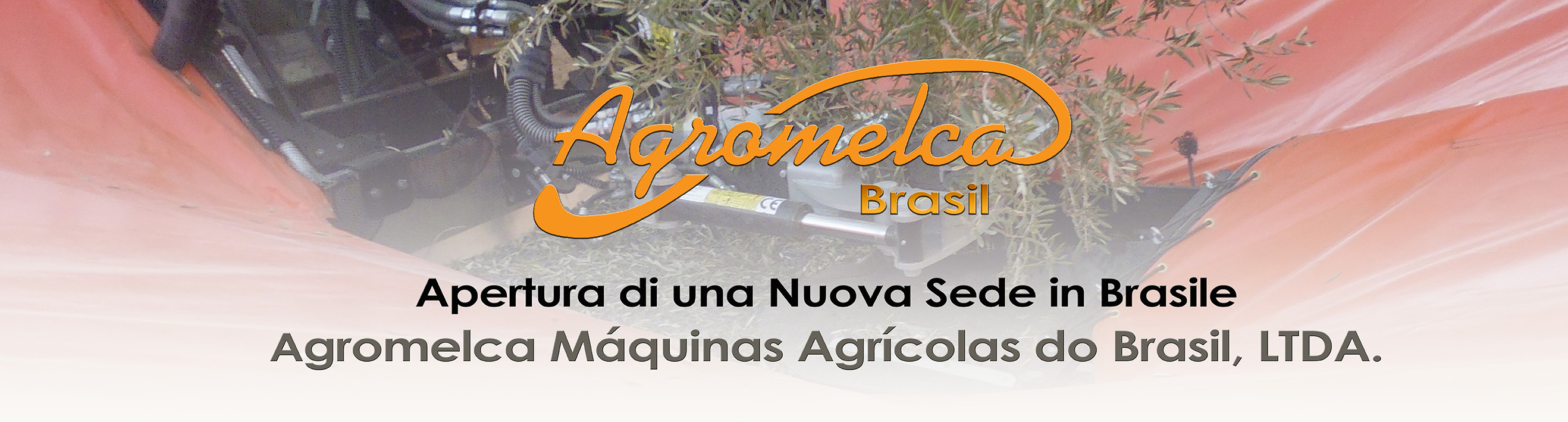 equipos_recolectores_de_aceituna_y_frutos_secos_agromelca_en_brasil_italiano-banner